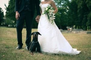 Photo originale avec leur chien