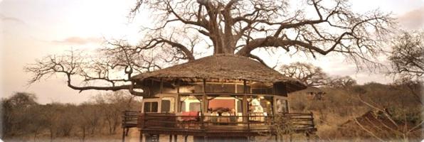 Voyage de Noces Tanzanie